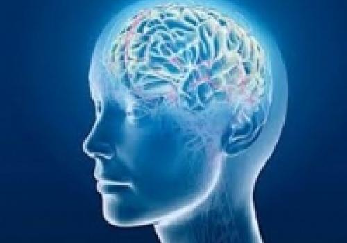 12. Tjedan psihologije u Dubrovniku